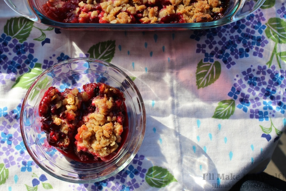 Rhubarb Berry Crisp | I'll Make It Myself! 4