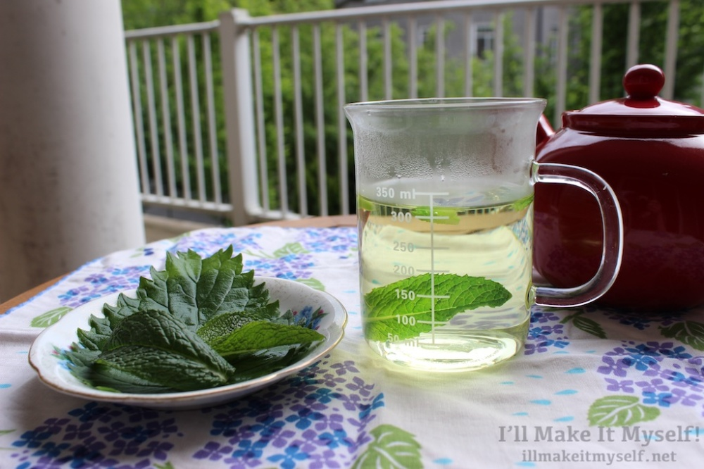 Nettle and Mint Tea | The Lobster Dance 1 (1)