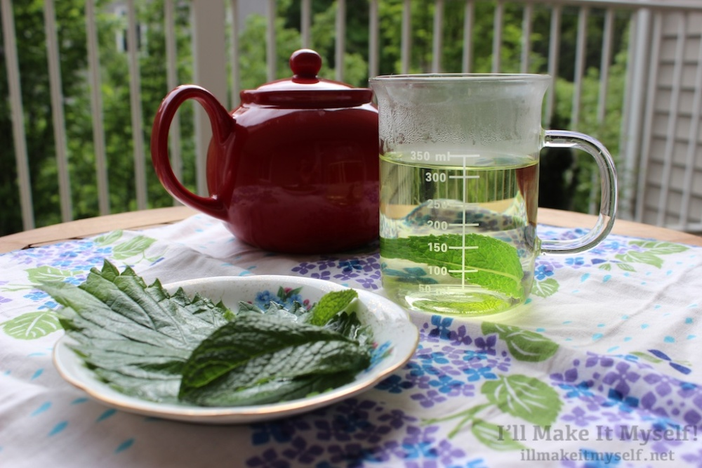 Nettle and Mint Tea | The Lobster Dance 2 (1)