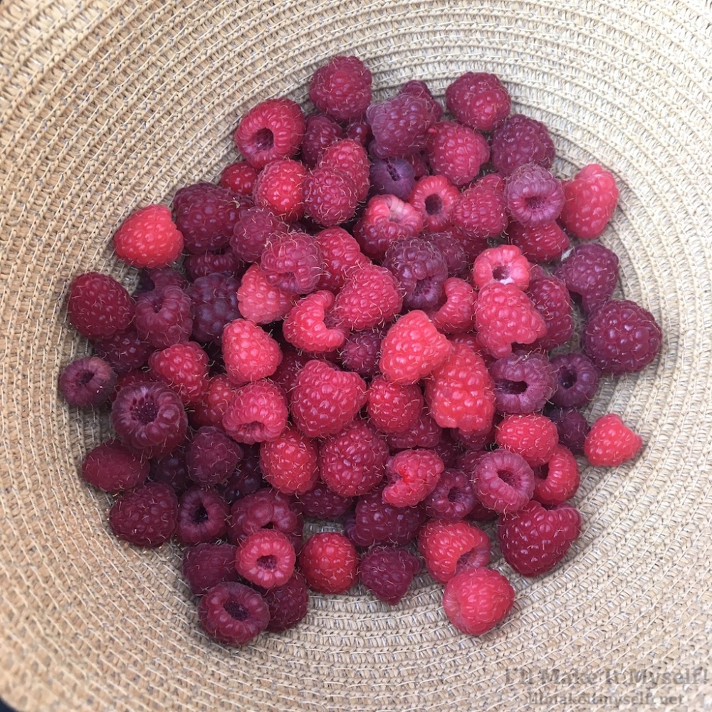 Raspberries | I'll Make It Myself! 2