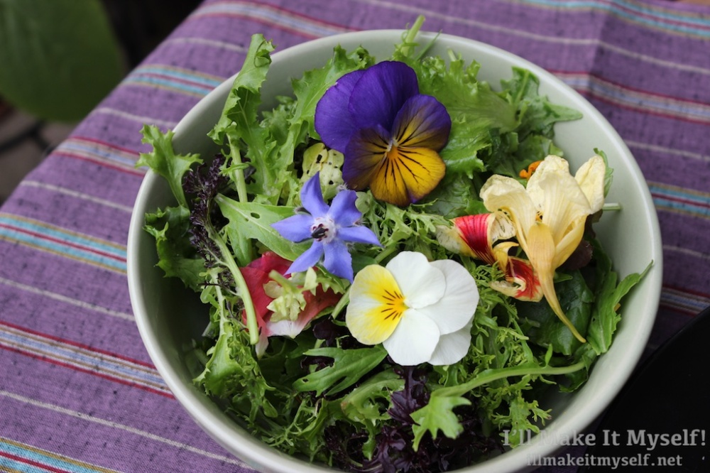 Garden Salad 1